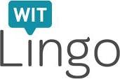 witlingo logo_result
