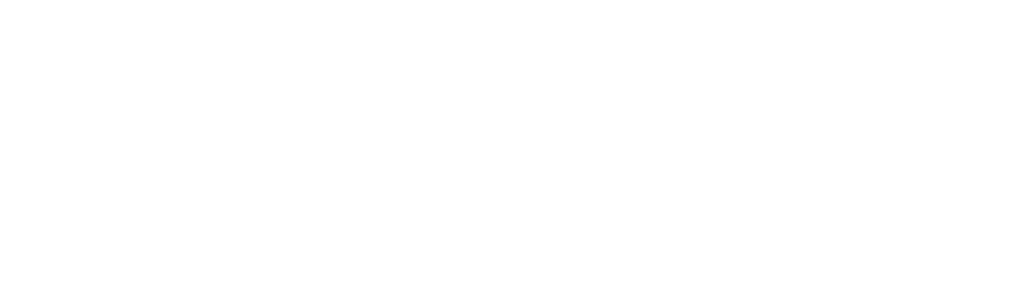 voice_logo_white_transparent.png