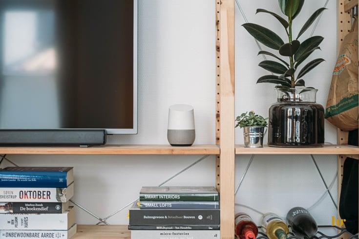Shelf with a tv, plants, and a google home device.